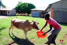 waterwells africa uganda drop in the bucket amusia ajesa-41