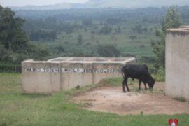 Water Wells Africa Drop In The Bucket Busumbu Primary Uganda-52