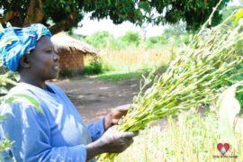 water wells africa uganda drop in the bucket olupe primary school-238