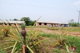 water wells africa uganda drop in the bucket st charles lwanga kakindu primary school-02