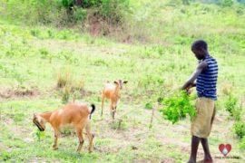 Drop in the Bucket Africa water charity, completed wells, Doyoro Borehole Uganda40