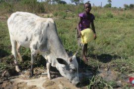 Drop in the Bucket Africa water charity, completed wells, Ocedok Borehole Uganda-23