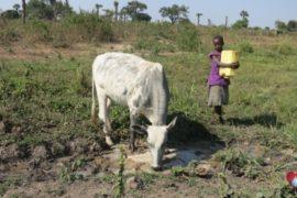 Drop in the Bucket Africa water charity, completed wells, Ocedok Borehole Uganda-24