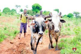 Drop in the Bucket Africa water charity, completed wells, Ongemen Borehole Uganda-08