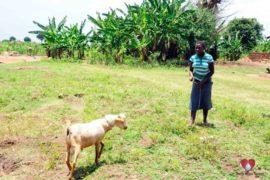 water wells africa uganda drop in the bucket charity aputon borehole-74