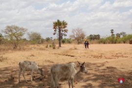 WaterWells_Africa_SouthSudan_DropInTheBucket_MakuachPrimarySchool 18